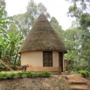 Bougainvillea round house lake bunyonyi