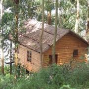 Marigold treehouse lake bunyonyi