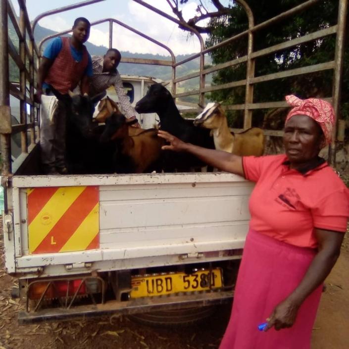 christmas gifts 2020 goats 14