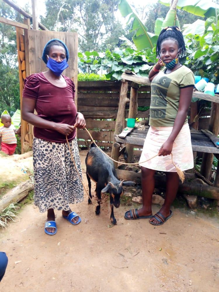 christmas gifts 2020 goats 7