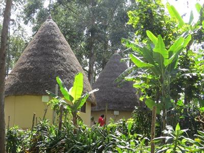 roundhouses on itambira